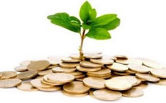 Economisti in erba…………….nessuno al verde
